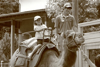 Another one of Mac's favorite things to do at the zoo -- ride a camel!  (July 3, 2007)© Carolyn S. Murray 2007