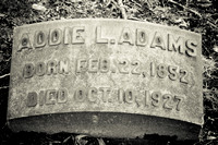 Addie Adams Grave Lakeview Cemetery Cleveland Ohio 1852 1927
