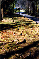 This is a picture taken in November 1998 of the Emerts Cove Cemetery in Emerts Cove, Sevier County, Tennessee.