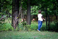 A family of deer wandered through our photo shoot!